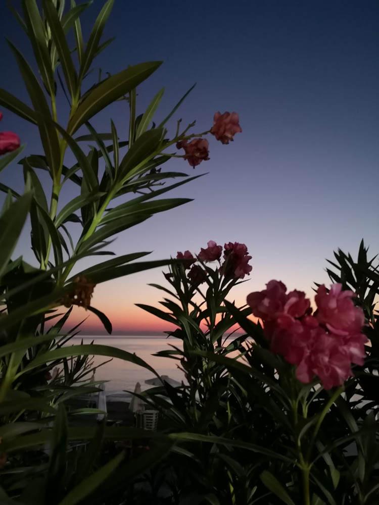 bed and breakfast rodi tramonto04
